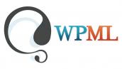 افزونه چندزبانه وردپرس | wpml wordpress plugin 8