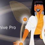 افزونه آمارگیر گوگل آنالتیکز | Beehive Pro Plugin